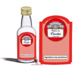 Garrafinha-de-50-ml-tema-boteco-budweiser2